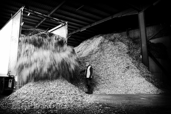 Biomass Photographer-IMG_6648BW_002