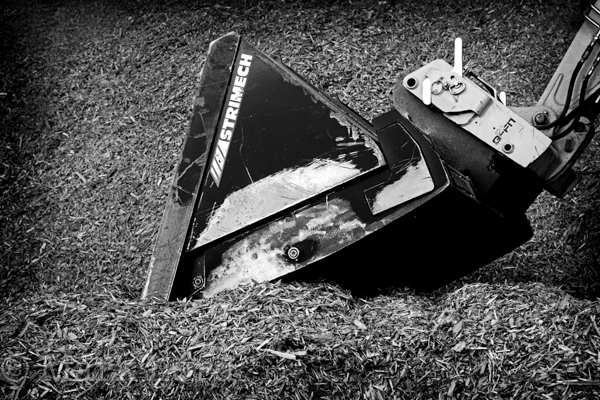 Biomass Photographer-IMG_6689BW_003
