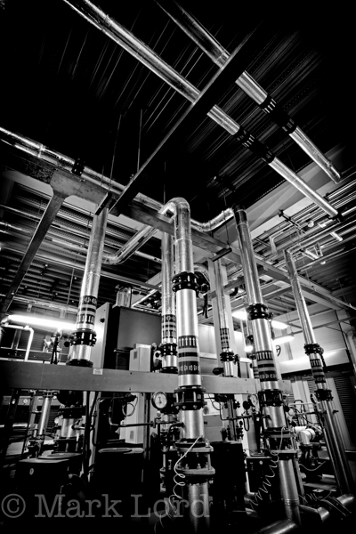 Biomass Photography-IMG_3237bw_001
